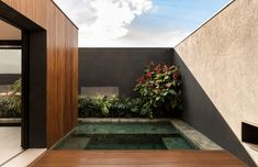 Image 6 of 28 from gallery of Cobogos House / mf+arquitetos. Photograph by Felipe Araujo Small Spa, Suite Principal, Building Front, Boundary Walls, Landscape Design Plans, Timber Deck, Timber Cladding, Tropical Landscaping, Tropical Backyard
