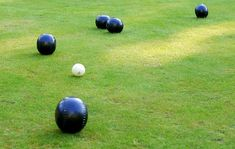 Getting the perfect bowling green is easy with these simple tips by Proctors NPK. Fast Bowling, Plant Growth, Types Of Soil, Bowls, Lawn, Green, Serving Bowls, Mixing Bowls, Grass