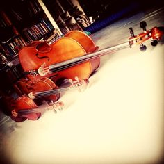 My strings. #violin #viola #cello #skylark #cremona #pearlriver #jakarta #indonesia #china #strings #instrument #wood