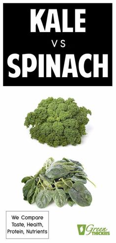 Which is better? The battle of the superfood commences. We put these two leafy green powerhouses to the test in every way imaginable. Click the link to read the full article. Spinach Nutrition, Nutrition Tips, Nutrition Education, Healthy Diet Plans, Healthy Eating, Healthy Recipes, Quick Recipes, Gourmet Recipes, Healthy Foods
