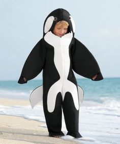 6a02a475ff6 whale-of-an-orca boys costume - Only at Chasing Fireflies - Anyone