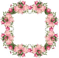 free pink roses frame, vintage style