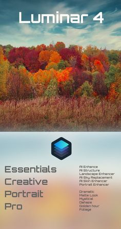 Luminar 4 is a powerful photo editing tool. It comes as standalone software or as a plugin for Photoshop. Check out where it excels. Photoshop Plugins, Photoshop Tips, Lightroom, Edit Your Photos, 4 Photos, Nature Photography, Travel Photography, Photo Editing Tools, Simple Photo