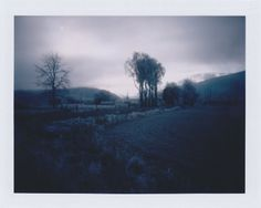 elegantwhispers:  cold sun   three years ago, winter