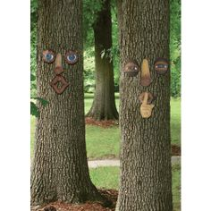 Garden Sensations® Forest Faces Assortment - 6 Pack - Ace Hardware