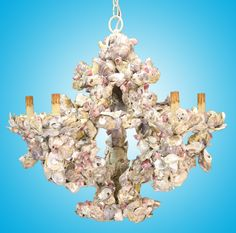 Design Chic - Currey and Company oyster shell chandelier