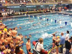 February 2012 4A State Swim Meet