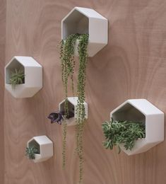 Fabulous wall planters indoor living wall ideas 33 - Your succulent garden is currently finished! Normally, mass-produced pots are somewhat more affordable. Planters are large pots meant for holding plants, brings a distinctive glam to the house decor. Vertical Wall Planters, Large Planters, Ceramic Planters, Planter Pots, Large Pots, Hanging Wall Planters Indoor, Hanging Plant Wall, Planter Ideas, Concrete Planters