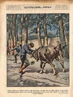 Affrontement d'un homme et d'un taureau