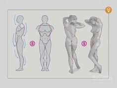 https://www.anatomy4sculptors.com/anatomy.php?menu=184