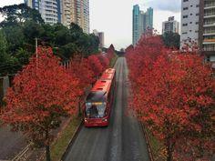 Ecoville - Curitiba - PR - Brasil