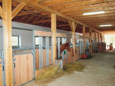 Growi paardenbox met voerhek