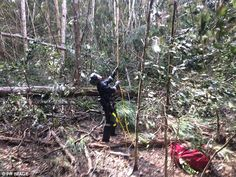 Emergency services at the crash sight in dense bush land where the body of a 25-year-old male passenger was found