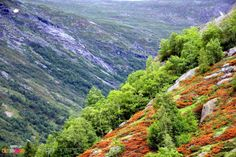 Les montagnes de Jotunheimen - Happy Us