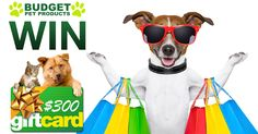 Answer the question correctly to go straight into the draw to win a $300 Budget Pet Products eVoucher. Competition runs from 1st - 31st July 2016. Winner drawn in August 2016.