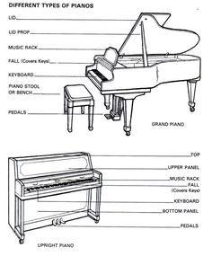 About the Piano parts of the Piano | Basic Piano lessons| Piano Lessons Online