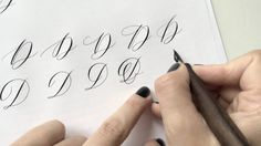 Writing Different Versions Of A Majuscule D In Modern Calligraphy Using Zebra G Nib And Sumi Ink