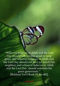 The Quran-Coaching is the best platform for the quran learning by taking online quran classes. www.qurancoaching.com