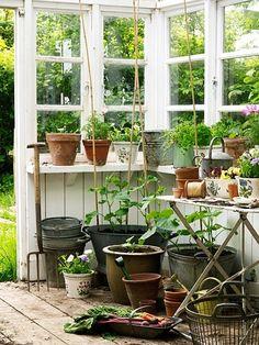 Garden shed! Love this garden shed! Greenhouse Shed, Greenhouse Gardening, Hydroponic Gardening, Potting Sheds, Potting Benches, Garden Benches, Modern Garden Design, Garden Structures, Dream Garden