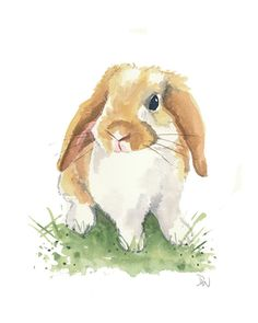 Original Rabbit Watercolor Painting - Lop Earred Bunny, Nursery Art, 8x10
