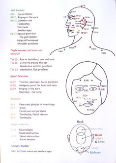 The Indian Head Massage Chart depicts various diagrams that would be useful to all massage therapists.