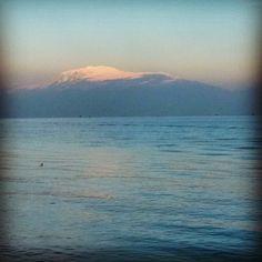 #lake #garda #desenzano #gardalake #water #reflex #mirror #riflessi #light #baldo #mountain #sky #cloudporn #pink #peace #nature #instanature #instamoment #snow #novellaorchidea #novella #orchidea #raccontierotici #racconti #ebook #ricardo #tronconi #erot