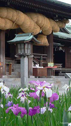 """Miyajidake shrine"" Fukutsu-city, Fukuoka prefecture, Japan - I went to this shrine on New Year's Day 2003. Amazing."