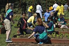 Fairport Girl Scouts plant vegetables with Michelle Obama in the White House Garden!