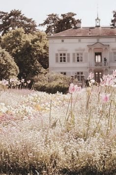 """""""The building was cloaked in a golden and pink haze, the scent of summer rich in the air...it was a memory, a relic of the past I couldn't quite recall..."""" - Aurelia - A. R. Hanley"""