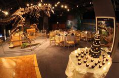 Orlando-Science-Center-Wedding-Planning-geek-wedding-ideas