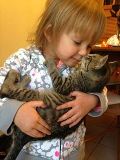 The only problem is when you have to let go and put him down because how could anyone resist hugging this cat?