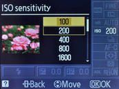 Understanding ISO Sensitivity | When to Change ISO Settings from Nikon Photography Tips Techniques and Tutorials | Nikon Learn and Explore