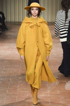 Alberta Ferretti Autumn/Winter 2017 Ready-to-wear Collection   British Vogue