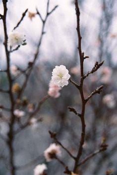 warm winter by Atsuhiko Takagi