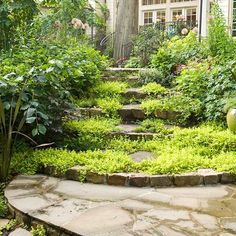Add Life - Grow low groundcovers between flagstones to give your patio an old-world, established feeling. Or try the same with brick; just pop a few random bricks out of the ground and place low perennials (such as this golden creeping Jenny) in their place.