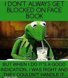 """Hell yea kermit I know what you mean! Lol now the truth comes out and she doesn't have to hide all those """"men"""" pics she drewels over. Facebook Humor, Facebook Jail, Facebook Quotes, Facebook Drama, Me Quotes Funny, Sarcastic Quotes, Funny Jokes, Funny Sayings, Funny Facts"""