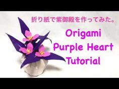 Purple Heart - ( Tradescantia pallida) - YouTube