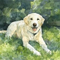 8x10 Custom Pet Watercolor by david scheirer