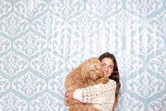 Photobooth de los Australian Labradoodle del Criadero Frank on the Road con La Caravana Photobooth #australianlabradoodle #perros #bogotá #photobooth #dogfriendly Labradoodle, Toddler Bed, Furniture, Home Decor, Fashion, Factory Farming, Dogs, Moda