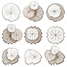 Trees - Top View by mart_m Trees top view. Easy to use in your landscape design projects! Eps 10 and Ai CS 3 included. Landscape Architecture Drawing, Landscape Sketch, Architecture Graphics, Landscape Drawings, Landscape Design, Tree Plan Png, Photoshop Elementos, Trees Top View, Plan Sketch