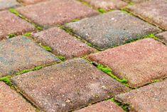 Jak pozbyć się mchów i chwastów z pomiędzy kostki brukowej? Handmade Home Decor, Cheap Home Decor, Brick Patios, Stepping Stones, Outdoor Decor, Hacks, Gardening, Diy, Environment
