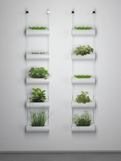 Herbs Gardening Adorable Indoor Garden Herb Diy Ideas 24 - First of all, know that the typical herb garden kit (assuming it has been concocted by a trusted brand in […] Jardim Vertical Diy, Vertical Garden Diy, Indoor Vertical Gardens, Hydroponic Gardening, Container Gardening, Indoor Gardening, Organic Gardening, Vegetable Gardening, Balcony Gardening
