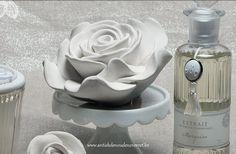 Rose parfumée de Mathilde M.