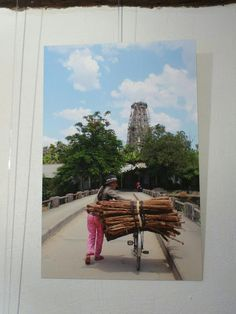 Ailleurs à la Galerie De l'art ou du cochon Jean-Yves Caruel Photos prises dans le Nord Vietnam. Jean Yves, Galerie D'art, Vietnam, Photos, Contemporary Art, Pictures