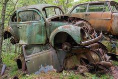 Bastnas Car Graveyard: Sweden's Vast Vehicle Cemetery Boasts '1,000' Abandoned Cars