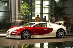 Bugatti Veyron in badger colors