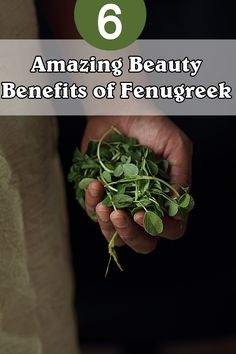 Beauty Benefits of Fenugreek: Fenugreek may not be the most common spice in your kitchen,Read further to discover more!!!