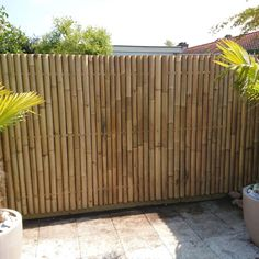 Discover the best Bamboo Screening. Buy your Giant Bamboo Fence Panel 90 x 180 cm at Bamboo Import Europe. Guaranteed the lowest price! Bamboo Privacy Fence, Giant Bamboo, Bamboo Screening, Bamboo Poles, Bamboo Architecture, Bamboo Shades, Fence Panels, Wooden Fence, Garden Fencing
