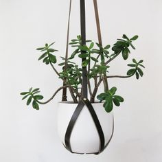 Recycled+Leather+Plant+Hanger+with+Brass+by+BlisscraftandBrazen,+$75.00