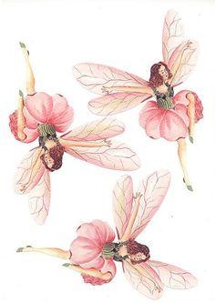 3D Fairy